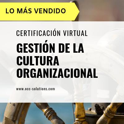 Curso Gestión de la Cultura Organizacional