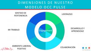 modelo pulse blog experiencia empleado